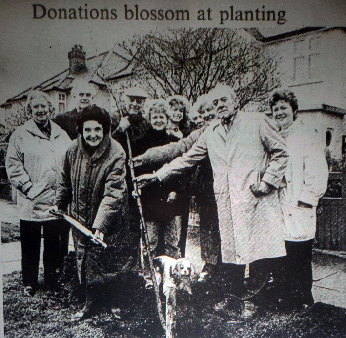 Planting trees in 1992